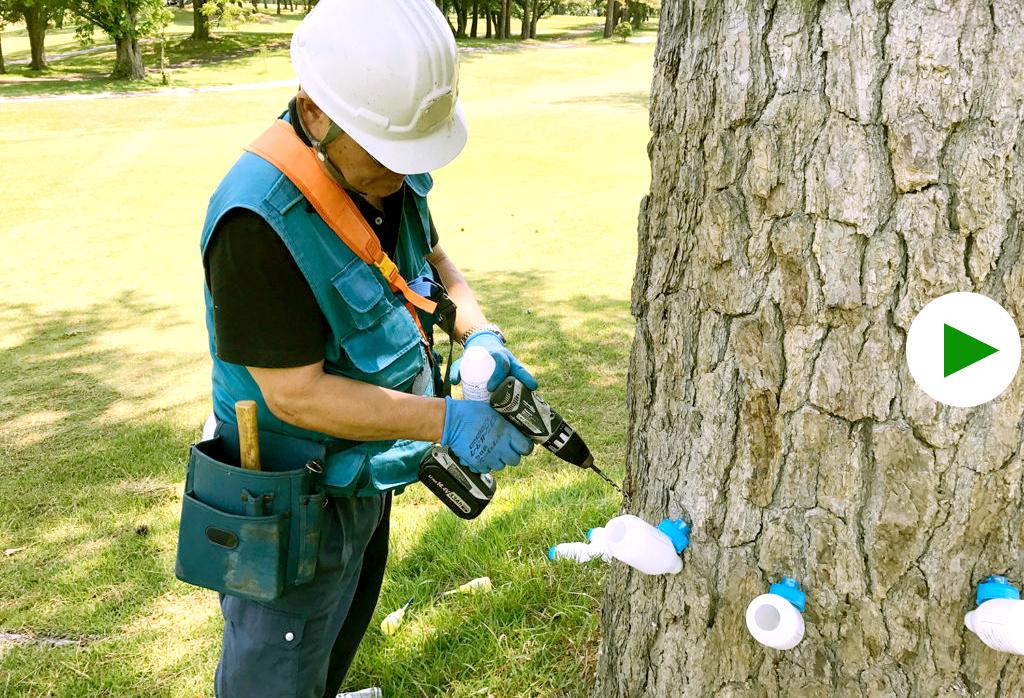 ゴルフ場肥料、土壌改良剤、農薬販売