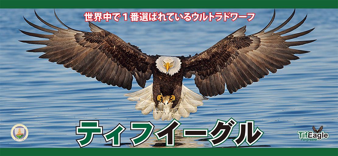 世界中で1番選ばれているウルトラドワーフ「ティフイーグル」